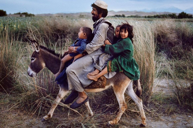 Un padre afghano con i suoi figli in groppa all'asino