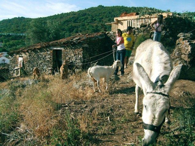 Dal progetto «InLand - Campo Adentro» di Fernando García-Dory (con Susanna Velasco)
