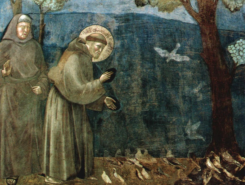 san Francesco predica agli uccelli, Assisi