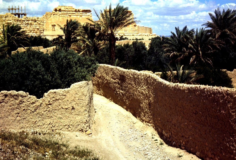 L'antica città siriana di Palmira