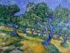 Van Gogh colorista arbitrario
