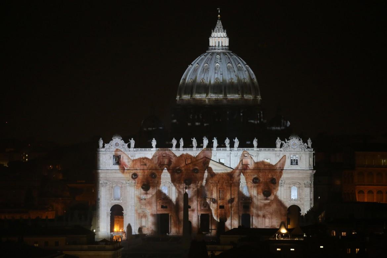 Giochi di luce sulla facciata di san Pietro nel 2015