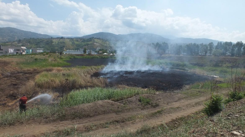 Rende, uno dei laghi  dell'ex Legnochimica