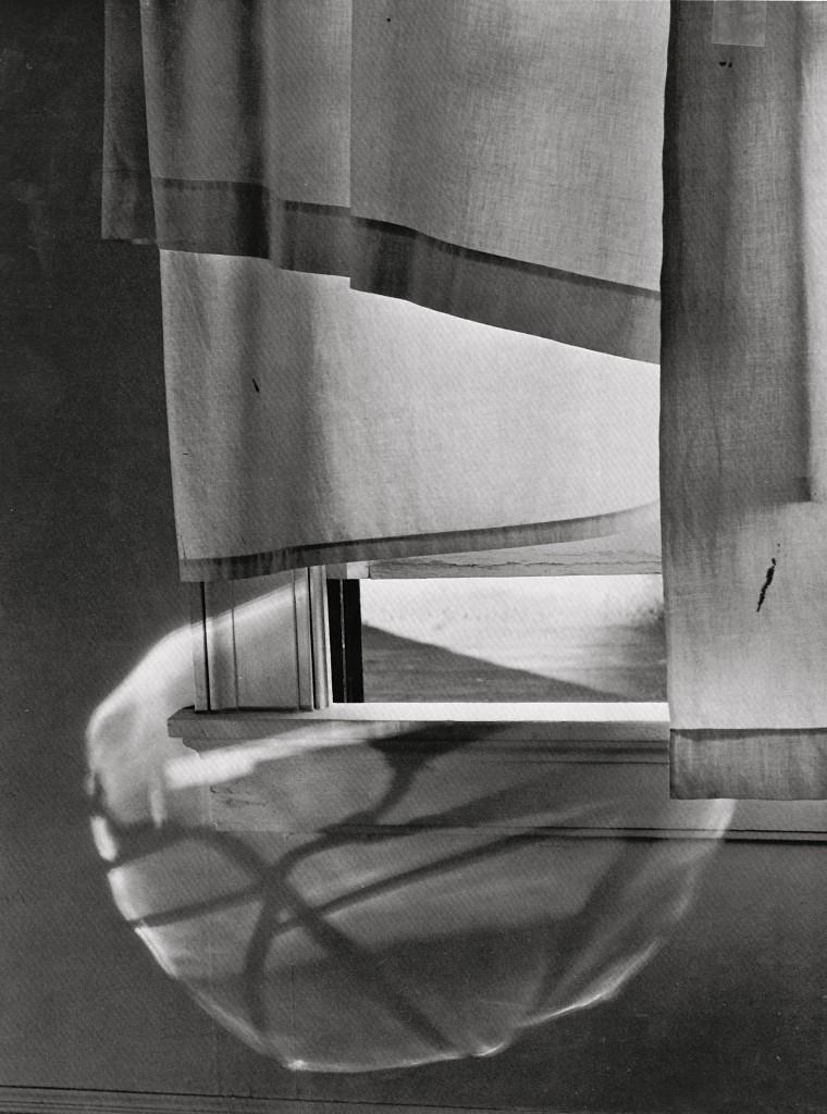 Minor White, «Windowsill Dreaming», 1958, Princeton University Art Museum © Trustees of Princeton University