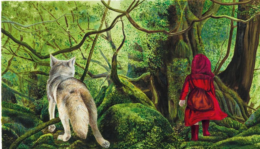 Cappucceto Rosso di Fabian Negrin (le Fiabe dei Grimm per Donzelli)
