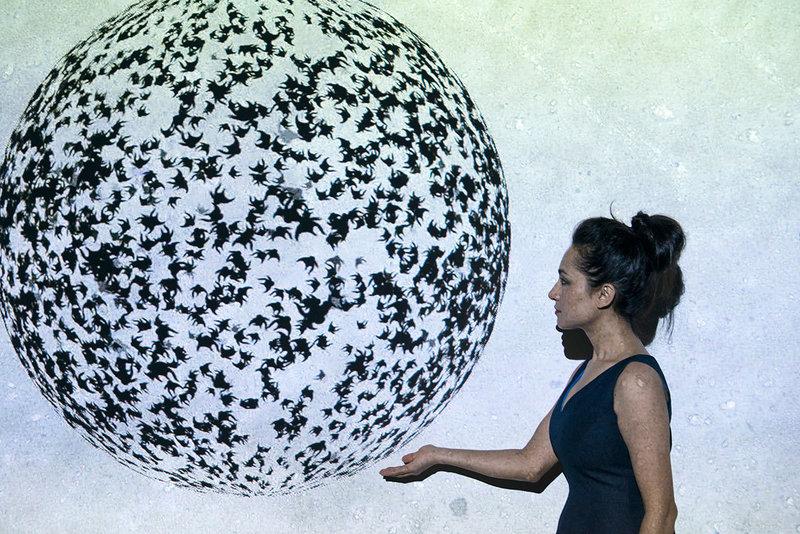 Shahzia Sikander, «Parallax»
