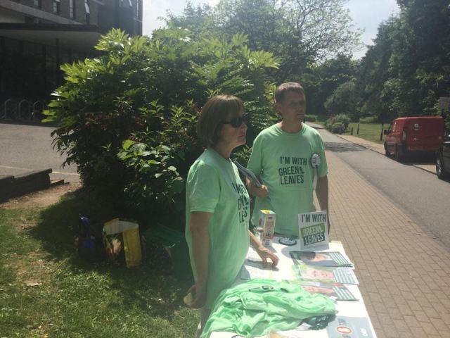 Patricia McKenna fa campagna per il Green Leaves