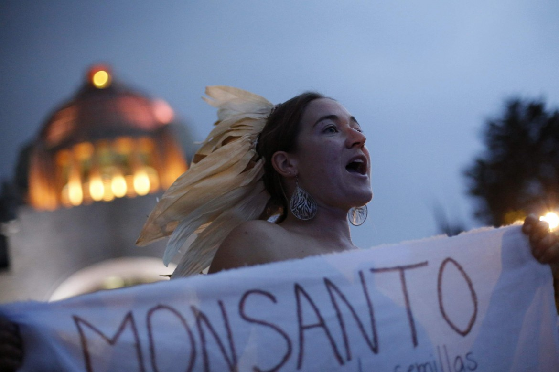 Protesta contro la Monsanto in Messico