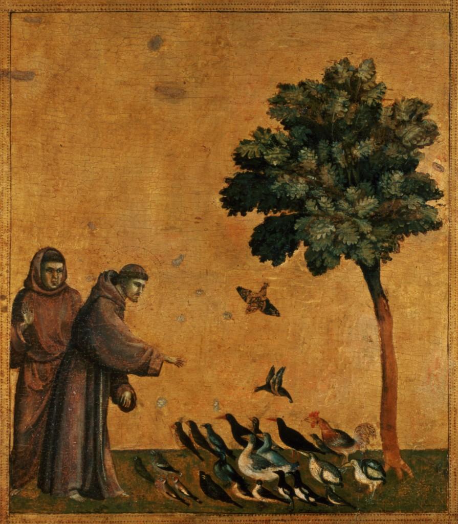 Giotto di Bondone, San Francesco predica agli uccelli (Louvre)