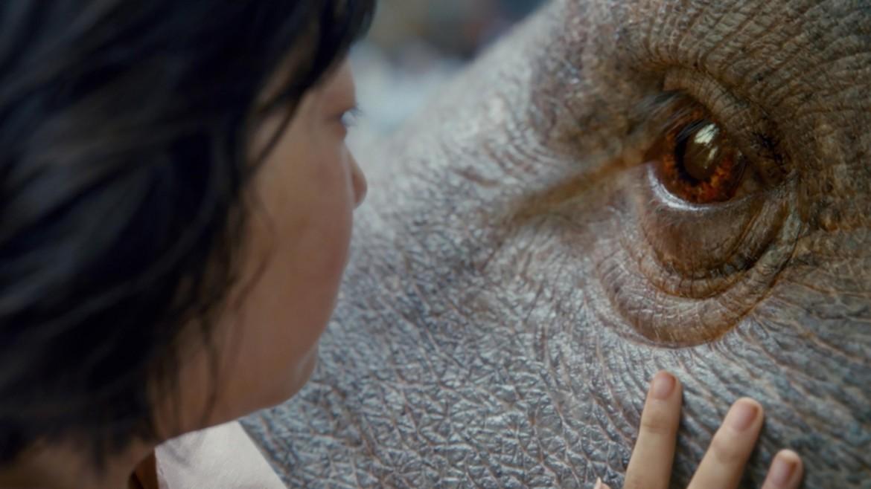 una scena di Okja