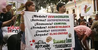 Venezuela, manifestazione ecosocialista