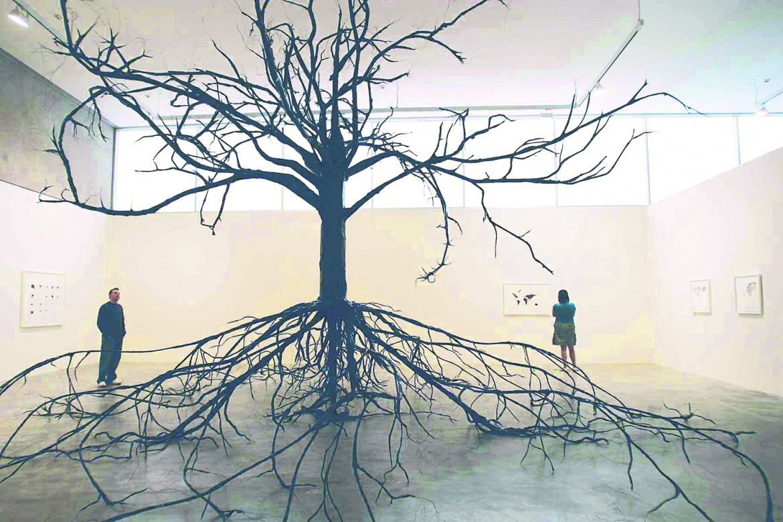 Katie Holten, «Excavated Tree (Flowering Dogwood)»