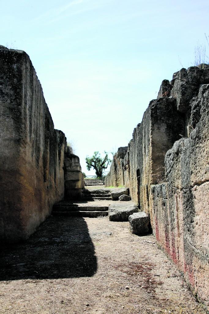 Tarquinia, necropoli  dei Monterozzi,  fondo Scataglini, fronte  di tombe a camera  ipogea lungo il viale  che conduce alla tomba degli Anina,  III-II secolo a.C.