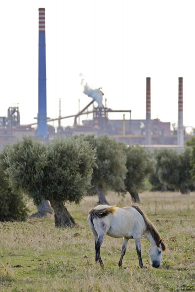 Una vista dalla campagna dell'Ilva di Taranto