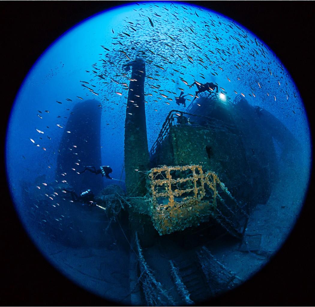 Relitto Haven unoasi di pesci dopo il disastro