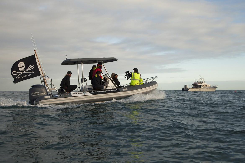 Un'azione diretta della Sea Sheperd