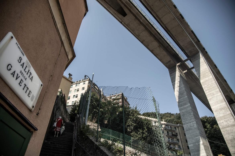 L'autostrada E80, di cui il ponte Morandi fa parte, sulle case di Staglieno, Genova