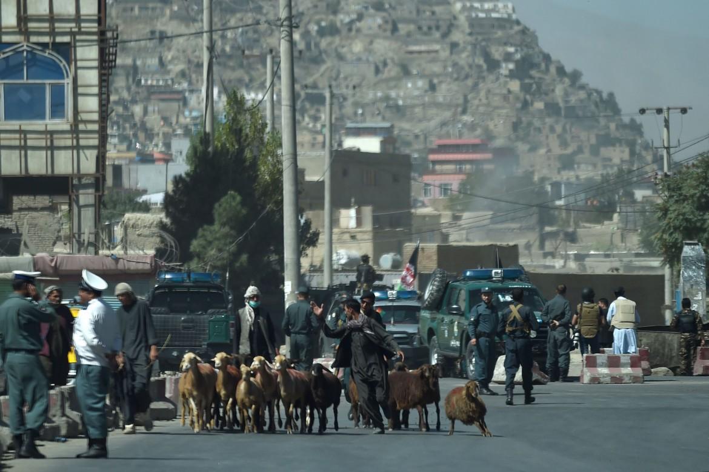 Un pastore in mezzo agli scontri tra esercito afghano e miliziani vicino la moschea Eidgah di Kabul