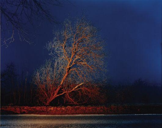 Gerard Byrne, A country road, a tree, evening: Cruagh, on the road between Kilakee and Tibradden, Dublin Mountains , 2006