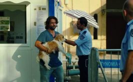 La fuga di un cane per raccontare la divisione di Cipro