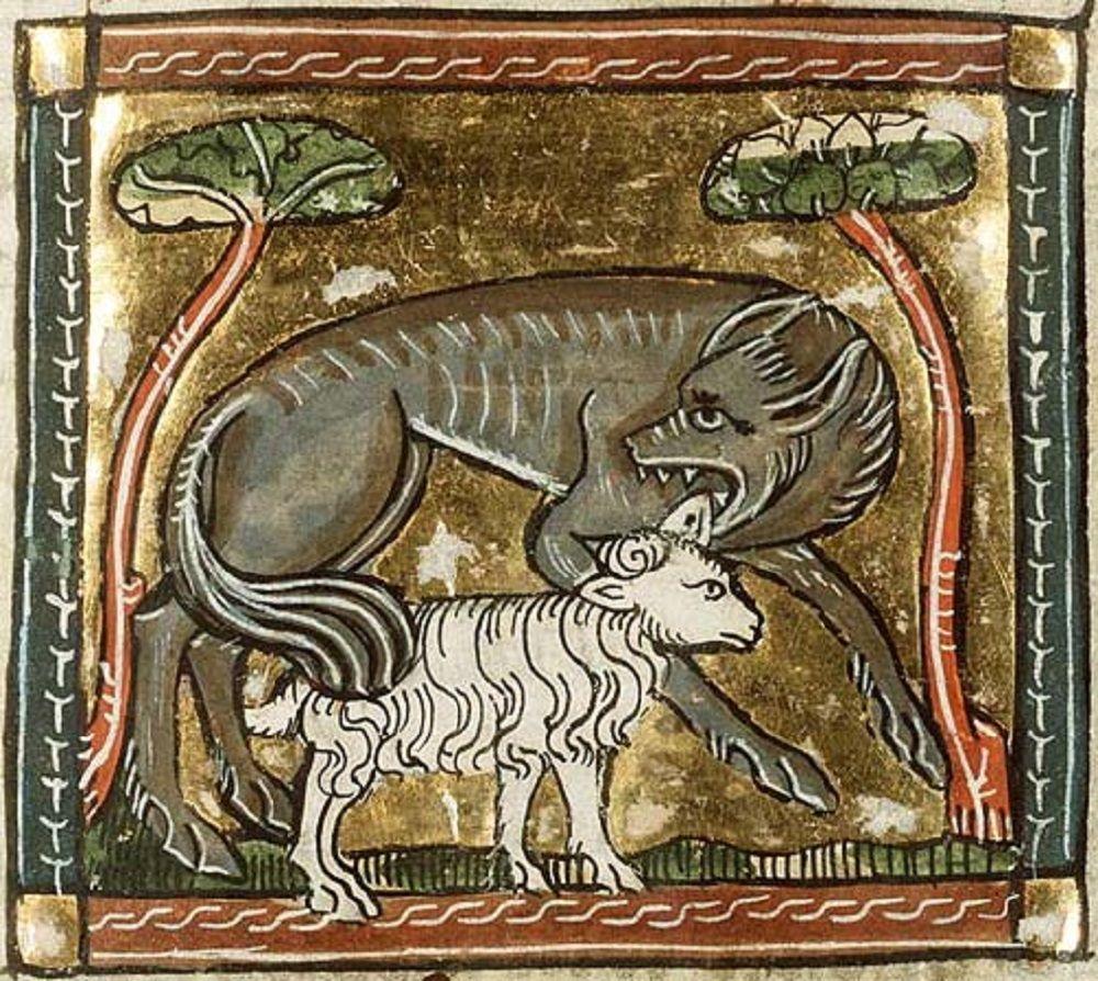 Il lupo e l'agnello, miniatura medievale, Avignone, Biblioteca municipale