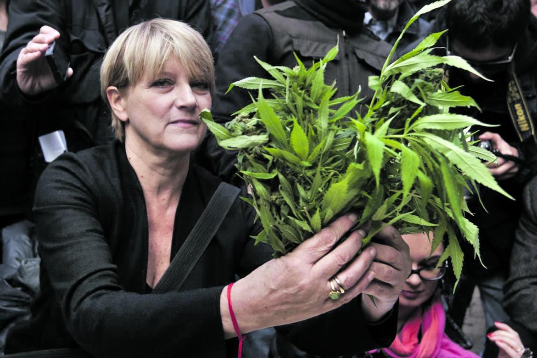 Rita Bernardini con le sue piante di marijuana. Foto pubblicata sul suo profilo Facebook