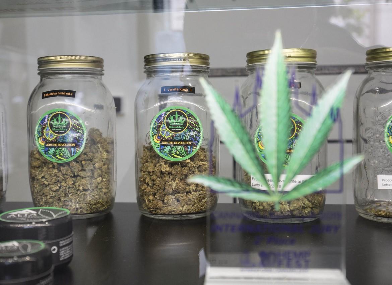 Negozio di prodotti a base di Cannabis legale
