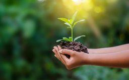finanza etica ambiente