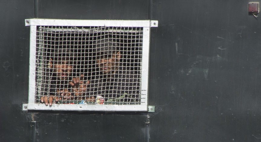 Prigionieri in Egitto
