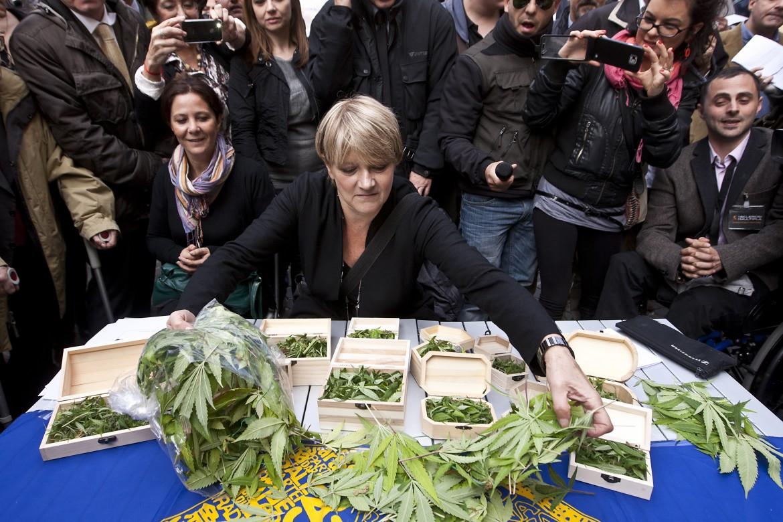 Piazza Montecitorio, la radicale Rita Bernardini mostra la raccolta delle piante coltivate sul terrazzo della propria abitazione