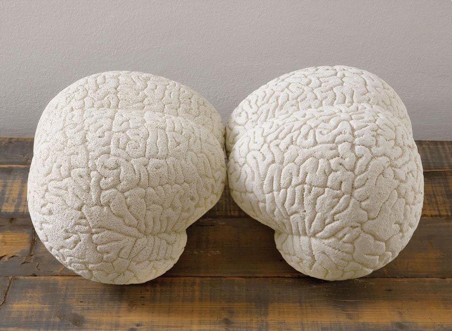 Claudia Losi,  Brain (2 pieces),  2008