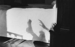H Guibert Ombre chinoise 79 Christine Guibert Courtesy Les Douches la Galerie Paris