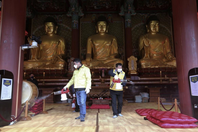 Disinfestazione anche nei templi buddisti di Seul