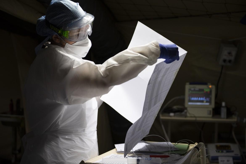 i virus possono riprodursi da soli