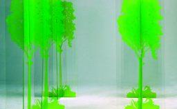 Paesaggi incontaminati contro l8217ottusa illusione antropocentrica