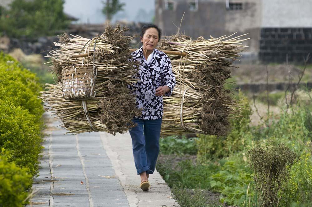 Yunnan, Cina