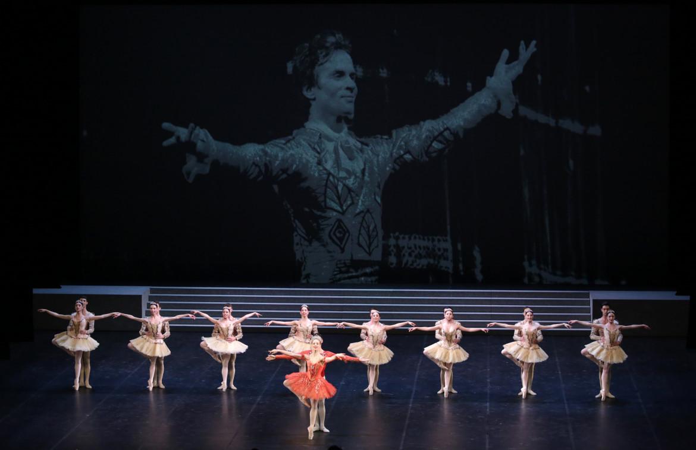 Virna Toppi, Nicola Del Freo e il corpo di ballo