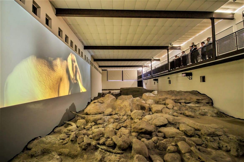 Il museo del pleistocene a Casal de' Pazzi