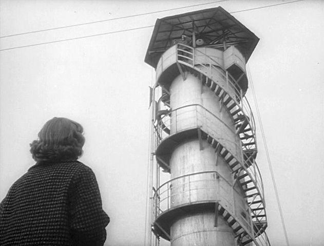 Un'immagine dal film
