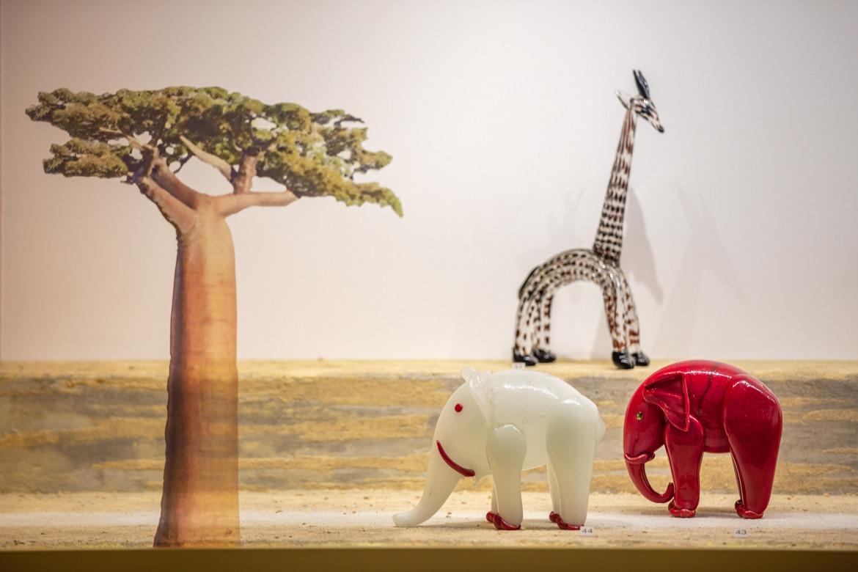 «L'arca di vetro. La collezione di animali di Pierre Rosenberg», particolare dell'installazione