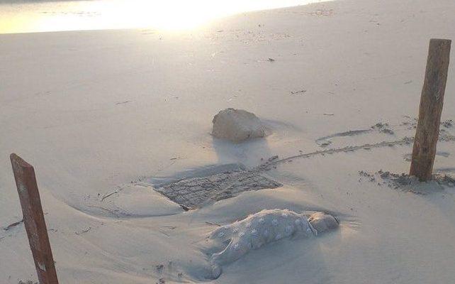 Uno dei cadaveri dei bambini sulla spiaggi di Zuwara