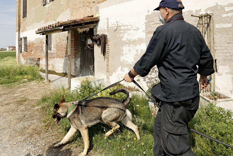 I carabinieri con il cane molecolare nei pressi della casa dei cugini  di Saman Abbas