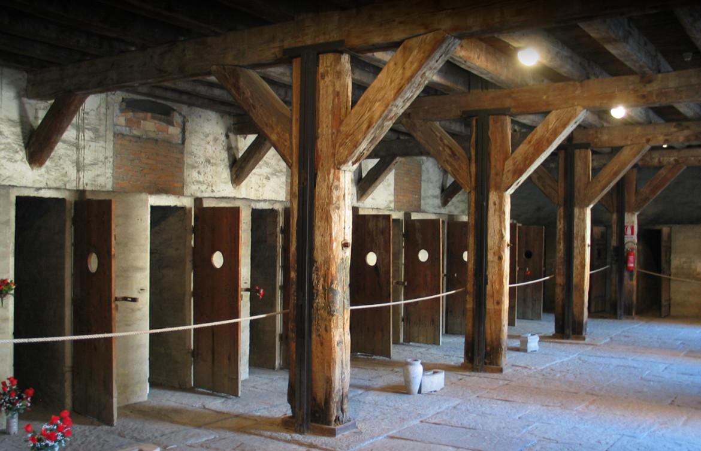 La fila di celle del sito del comune di Trieste