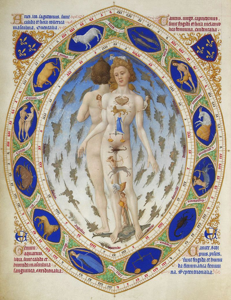 Uomo Anatomico  con la fascia dei segni zodiacali: miniatura  da