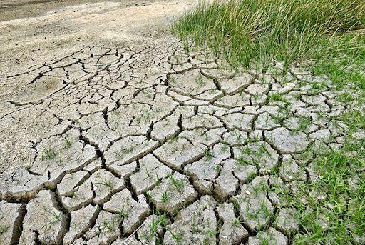In Calabria guerra dellacqua i contadini restano a secco
