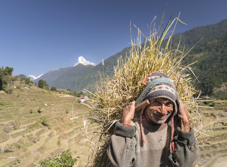 Contadini sull'Himalaya