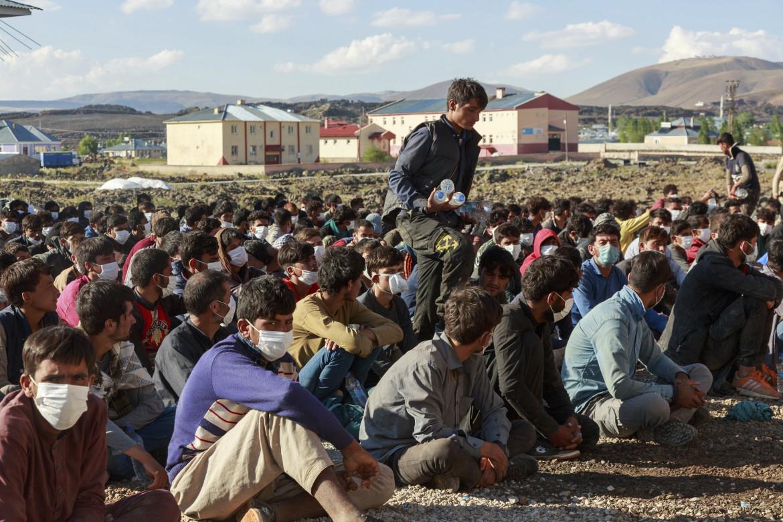 Profighi afghani in Turchia