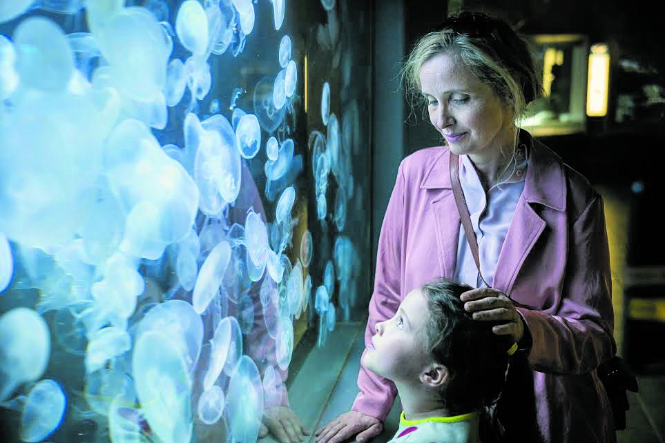 Julie Delpy in «My Zoe»