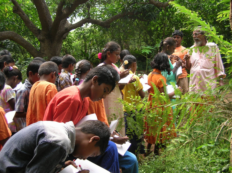 Corso di identificazione e uso delle piante medicinali nel Tamil Nadu