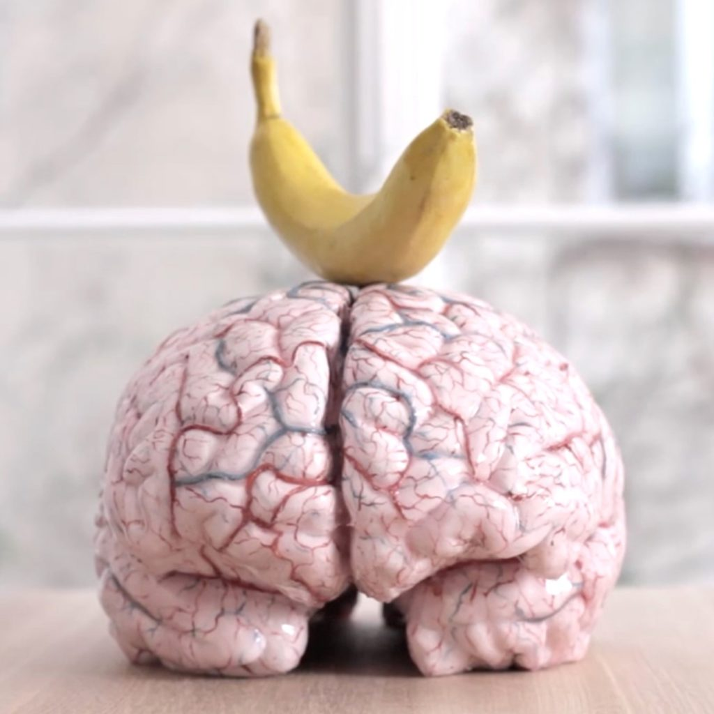 «Me with my own brain», di Jan Fabre